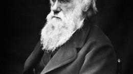 Charles Darwin 260x146 - Charles_Darwin-260x146