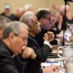 k2 items src 7718024b7f6b774d569e85b2b14aaaab 1 150x150 - Bishops discuss upcoming encyclical, pope's visit, top priorities