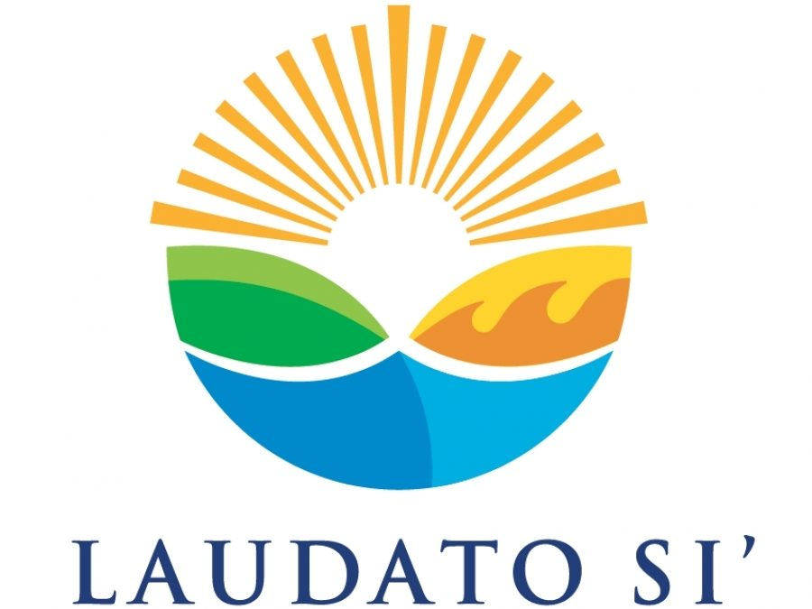 Laudato Si': Commentary, highlights, reaction to Pope Francis' new encyclical