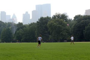20150902cnsbr0342 1 300x200 - Youths play with a Frisbee in Central Park in New York City