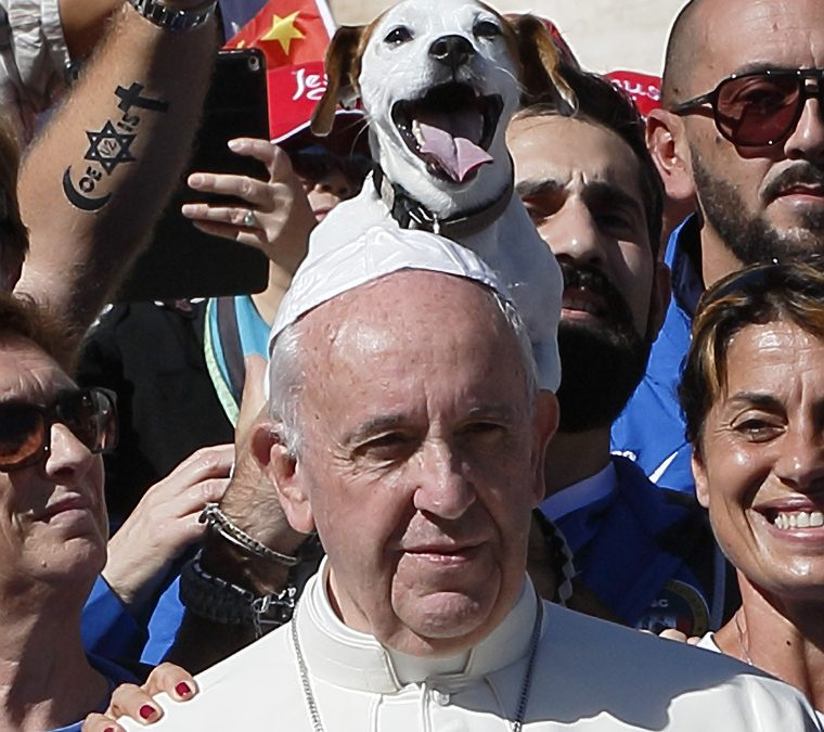 Pope: Church's mission is to attract people to Christ, not proselytize