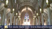 catholic sun featured content me 180x101 - catholic-sun-featured-content-me-180x101