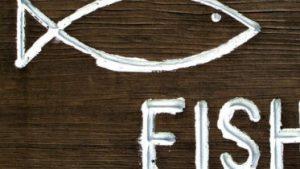 fishcrop e1487779754629 373x210 300x169 - fishcrop-e1487779754629-373x210