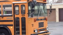 school bus freeimages 260x146 - school-bus-freeimages-260x146