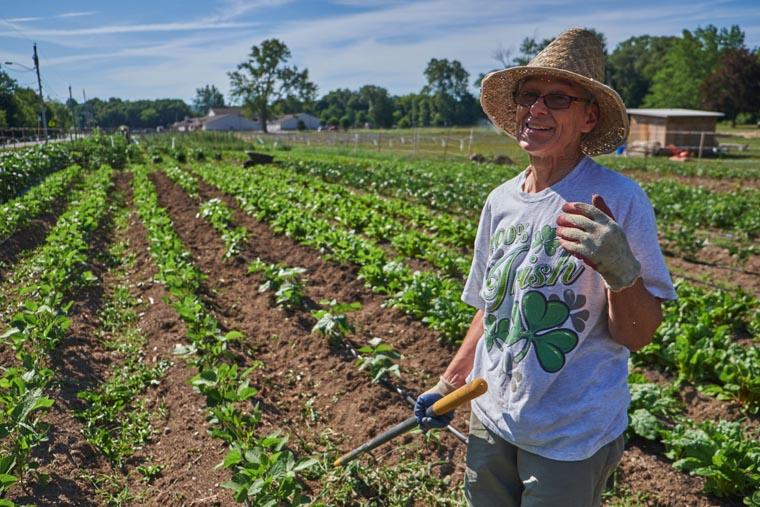 Brady Faith Farm springing to life