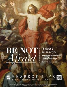 thumb be not afraid 1 232x300 - 'Be Not Afraid' is theme for Respect Life Sunday and 2017-18 program