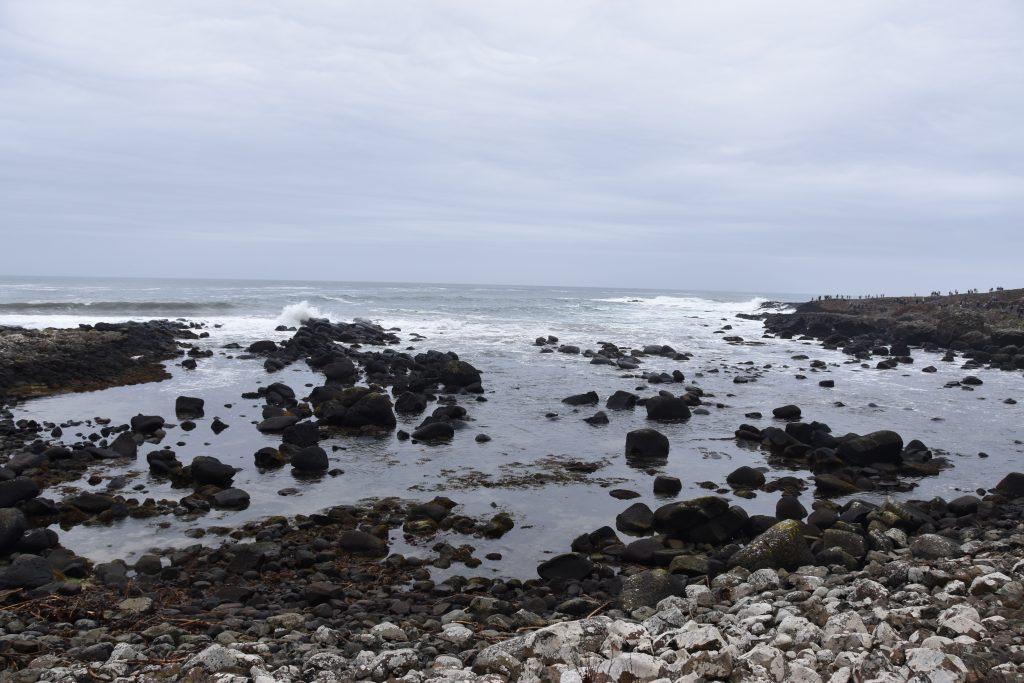 DSC 0504 1024x683 - Pilgrimage to Ireland, Day 5: The Antrim Coast