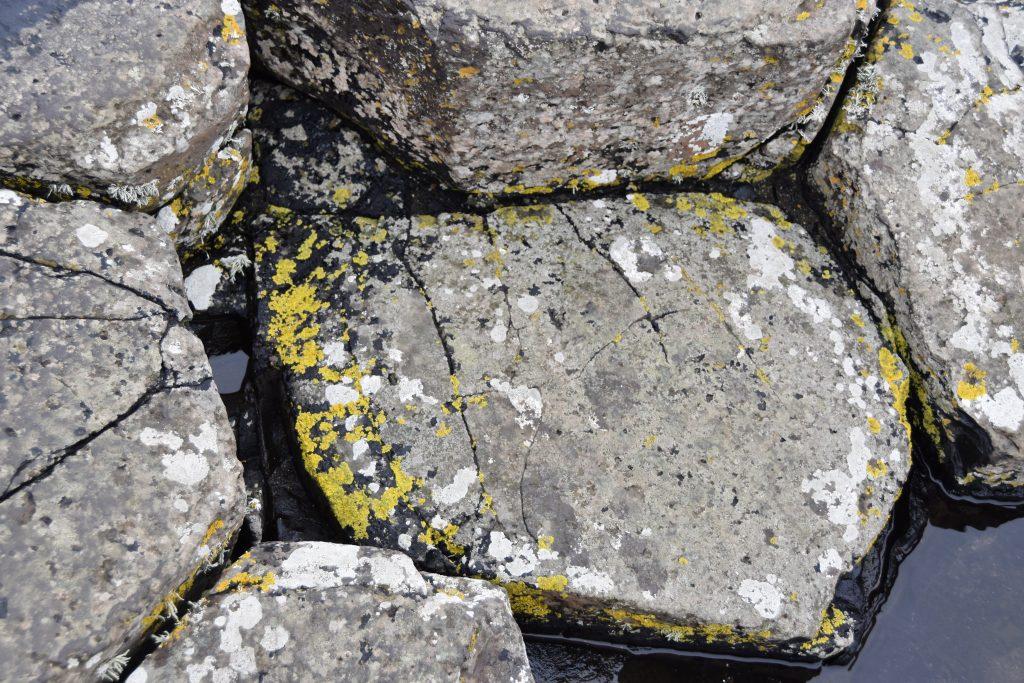 DSC 0523 1024x683 - Pilgrimage to Ireland, Day 5: The Antrim Coast