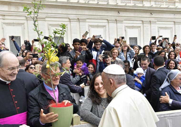 Be fruitful and multiply: Threatened trees planted in Vatican Gardens