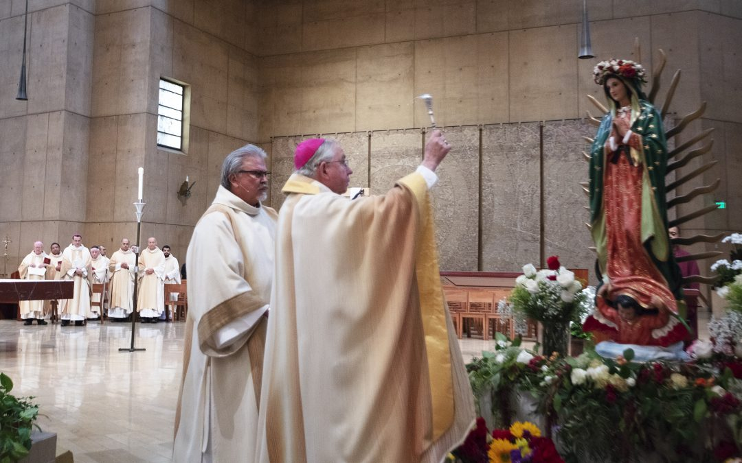 'Mary is heart of the church,' archbishop says in homily on new feast day