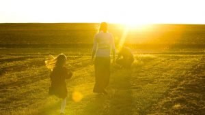 20180626T1235 0180 CNS HUMANAE VITAE 50 1 300x169 - KANSAS FAMILY FARM