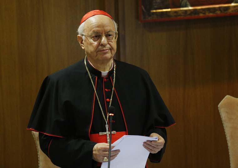 How the synod works: Cardinal shares statistics, working rules