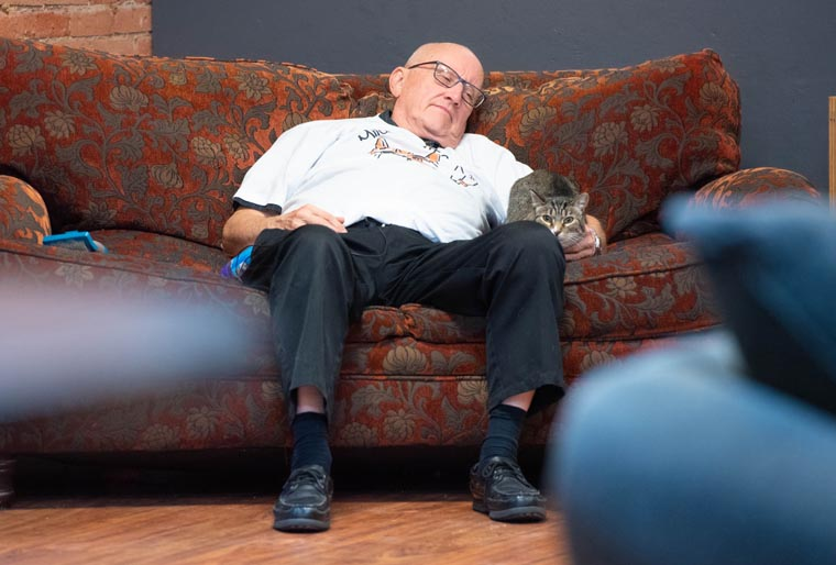 Norbertine brother sees caring for rescued cats at shelter as a ministry
