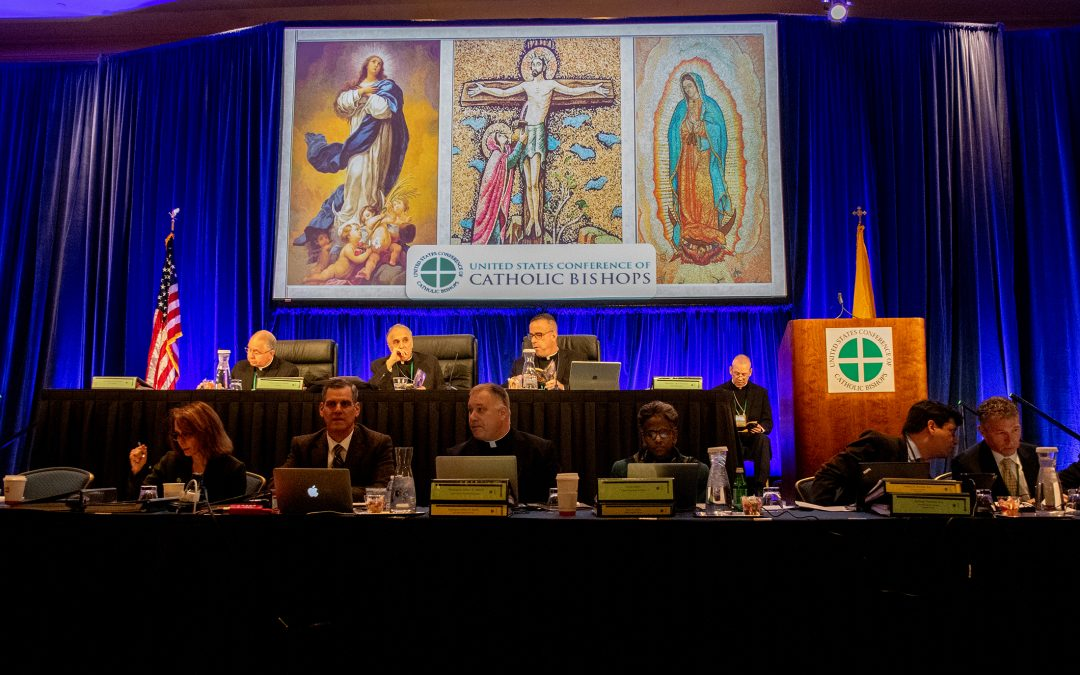 Catholic women urge bishops to work together and with laity for healing