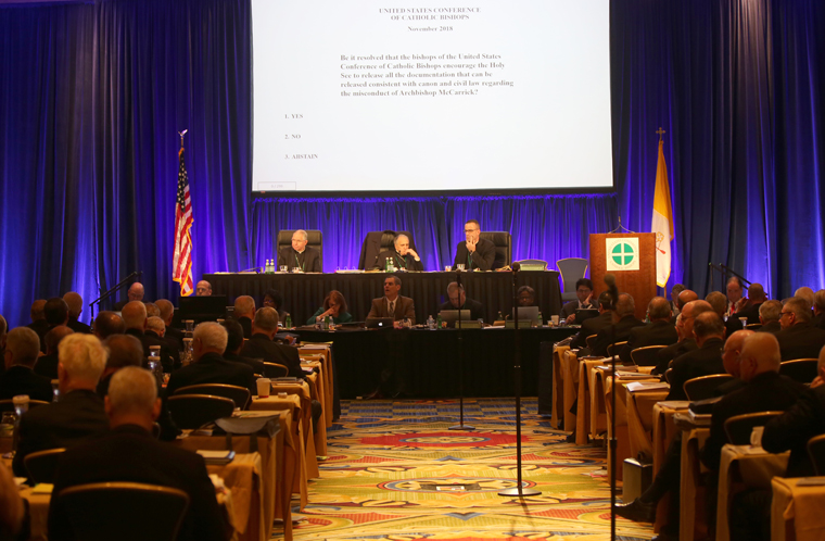 Bishops see much they can do despite no vote on steps to address abuse