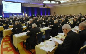 cover pic 20190611T1455 0700 CNS BISHOPS SPRING MEETING 300x188 - U.S. BISHOPS SPRING MEETING BALTIMORE