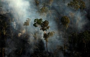 20190924T1331 30373 CNS UN PAROLIN RAINFORESTS 300x191 - SMOKE FIRE BRAZIL RAINFOREST