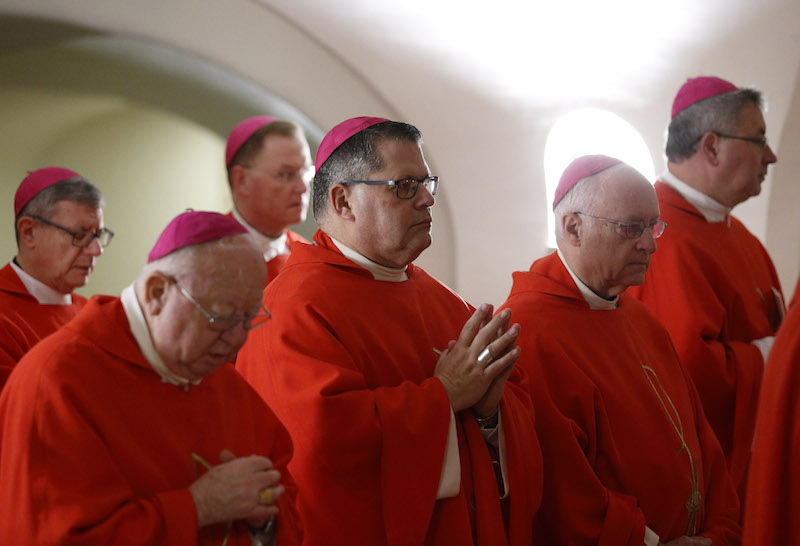 Cardinal urges New York bishops to find solace in St. Peter's example