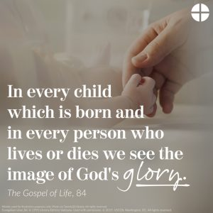 20200309T1140 34787 CNS PRO LIFE WALKING WITH MOMS color 300x300 - PRO-LIFE 'WALKING WITH MOMS' USCCB MATERIAL