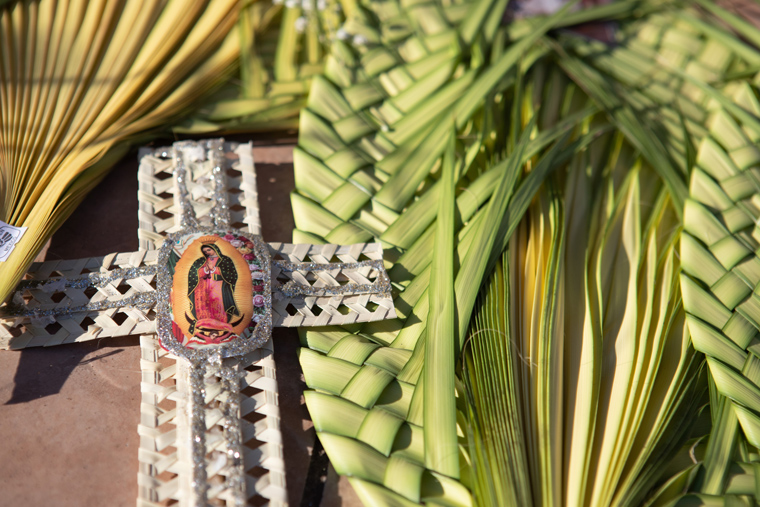 It will be a palmless Sunday at most U.S. parishes