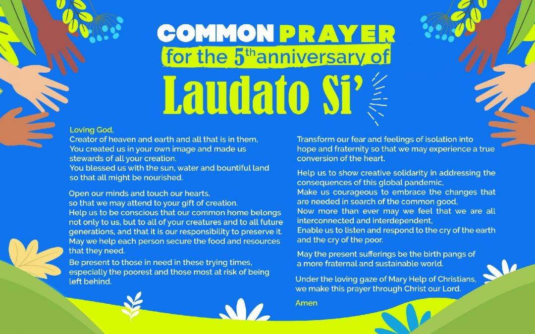 Diocesan task force promotes Laudato Si' message