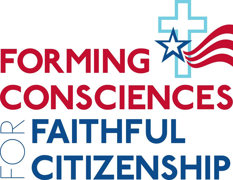 'Forming Consciences for Faithful Citizenship' examined