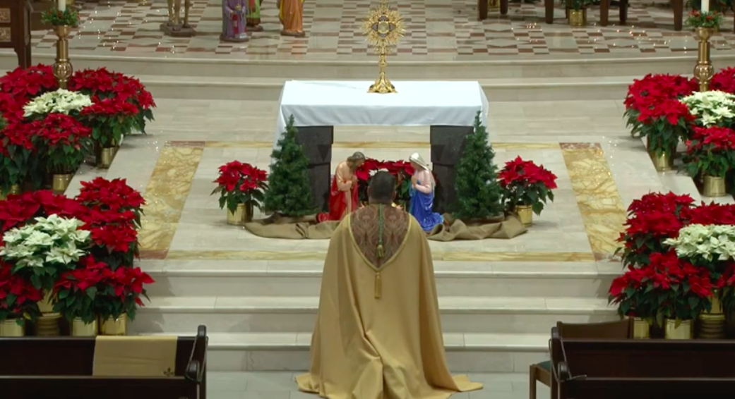 Bishop Lucia offers holy hour for nation, peace